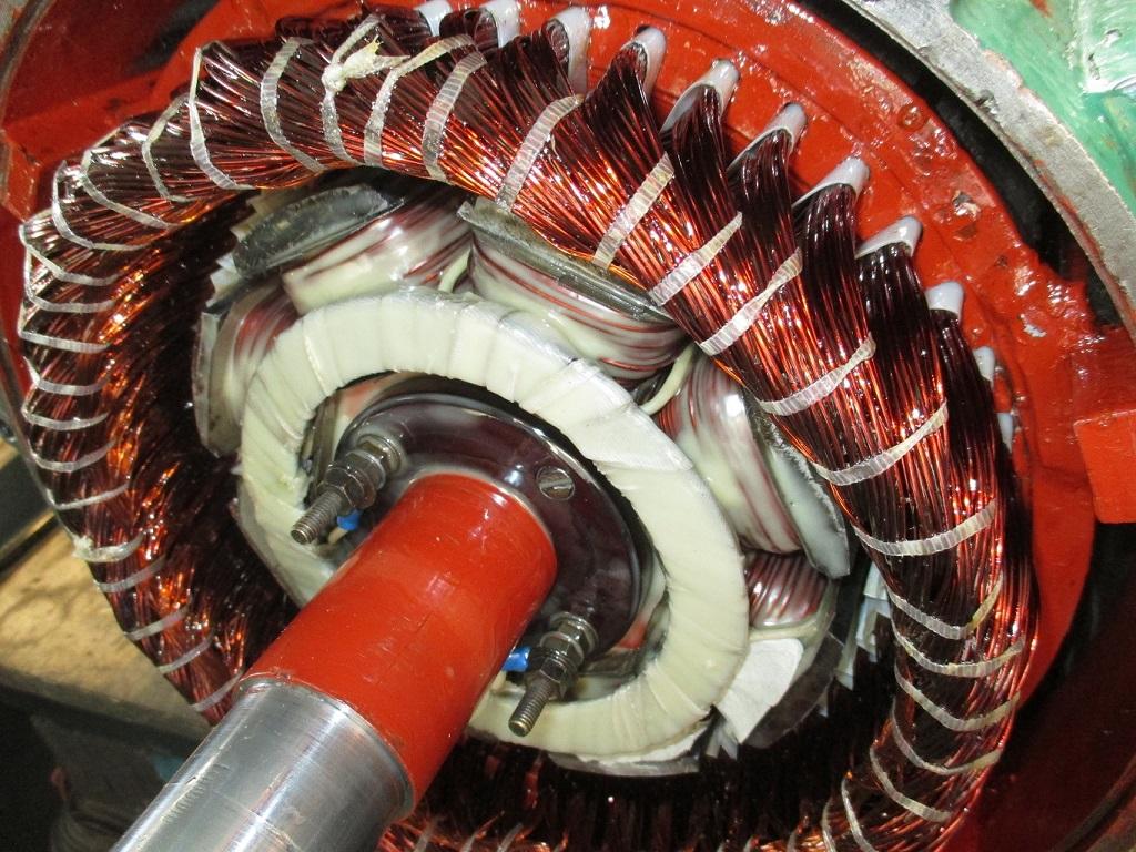 przezwajanie silnika elektrycznego Animex